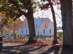 Church Picture Thru Trees